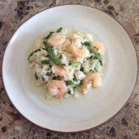 Lemony Shrimp Risotto with Arugula