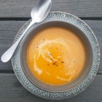 Instant Pot Butternut Squash and Leek Soup